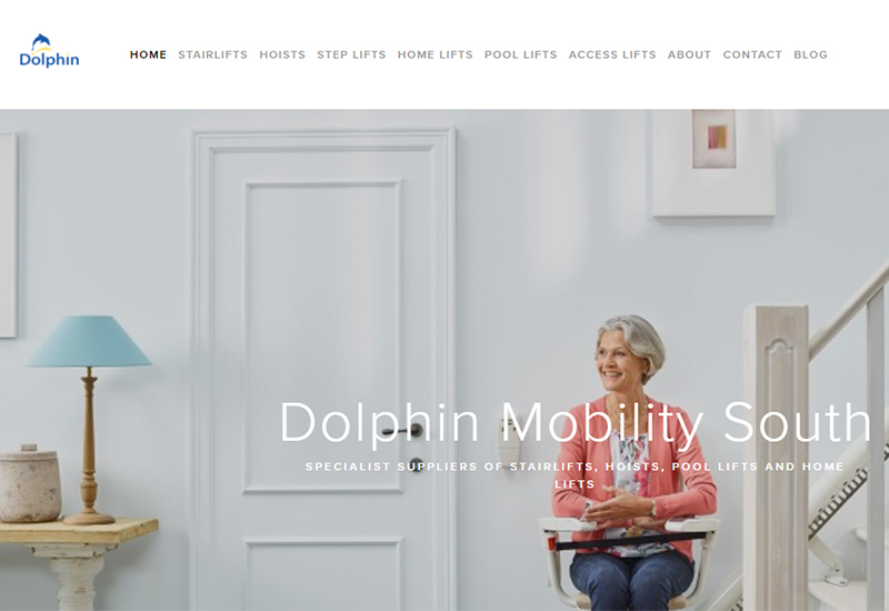 dolphin south new website