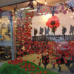 beactive diss remembrance dispay poppies